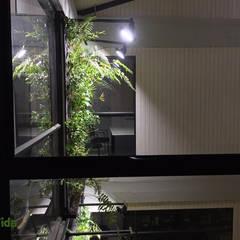 Muros verdes en Centros educacionales: Estudios y biblioteca de estilo  por DVida Jardines verticales,