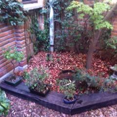 Jardines zen de estilo  por Bächler Paisajismo