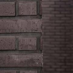 Walls by 디자인스튜디오참