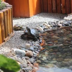 Tomando el sol: Jardines de estilo topical por Ambient Natura