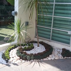 Rock Garden by Ambient Natura, Tropical