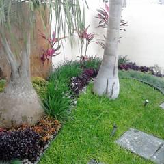 Nuevo diseño de Jardin Frontal: Jardines en la fachada de estilo  por Ambient Natura