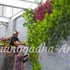 Tukang Taman Surabaya - Tianggadha-art:  tarz Bahçe süs havuzu