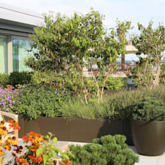 Roof terrace by Aralia