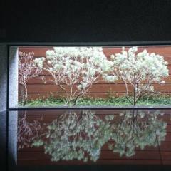 室內設計 五權 CD House:  窗戶 by 黃耀德建築師事務所  Adermark Design Studio