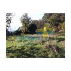 Terreno (1)1: Casas de campo  por Clix Mais