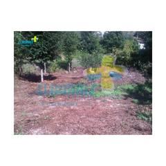 2 - Terreno (1): Casas de campo  por Clix Mais