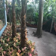 حديقة صخرية تنفيذ Luísa Nascimento - Homify