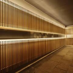 S館: 空間工房 用舎行蔵 一級建築士事務所が手掛けた廊下 & 玄関です。