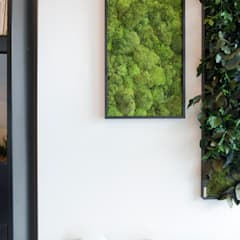 Showroom: Ingresso & Corridoio in stile  di AbitoVerde