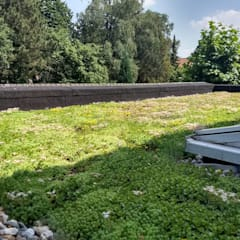 Groendak:  Plat dak door Bolier Ontwerp & Bouwregie