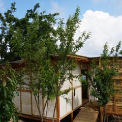 Chalets de estilo  por Juan Carlos Loyo Arquitectura , Rural