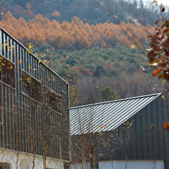 lyanature LAB (리아네이처 연구소 및 창고동): 위즈스케일디자인의  지붕