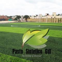 體育館 by Pasto Sintético Guadalajara