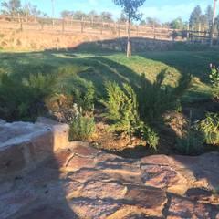 Jardín silvestre y de bajo mantenimiento: Jardines de estilo  por Agroinnovacion paisajismo sustentable