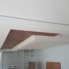 Arkia Studiosが手掛けた平屋根