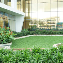SVC VENTURES - TREE WALK:  Commercial Spaces by iammies Landscapes