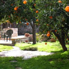 Jardins de pedras  por Mirasur Proyectos S.L.