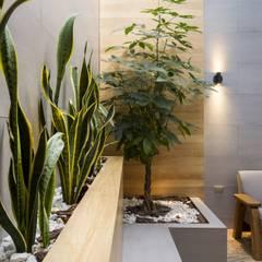 jardin adentro: Jardines de estilo  por Adrede Diseño