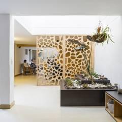 Taman Klasik Oleh Adrede Diseño Klasik