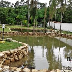 Estanques de jardín de estilo  por Flora Flor do Campo Pedras e Paisagismo