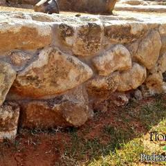 Muro de arrimo com pedras brutas irregulares: Paredes  por Flora Flor do Campo Pedras e Paisagismo