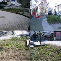 Largo da Venda Nova: Jardins  por Claudia Gomes