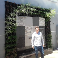Jardín Vertical y Cascada Artificial: Jardines frontales de estilo  por Globo Natural