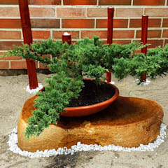 Front garden by Globo Natural
