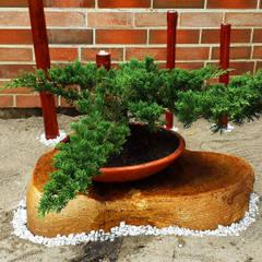 Jardines en la fachada de estilo  por Globo Natural