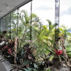 Apartamento en Chulavista: Jardines de estilo  por RRA Arquitectura