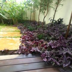 Tropical Sanctum - RBD Stillwaters:  Garden by Cherry Garden and Landscapers
