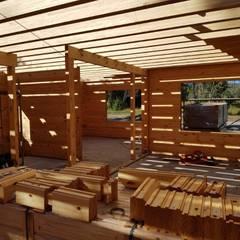 Construcción de Casa de madera en Pucón, Chile.: Livings de estilo escandinavo por Patagonia Log Homes