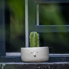 Jardines zen de estilo  por GPro - Gabinete de Proyectos