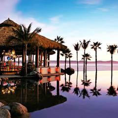 فنادق تنفيذ JSF de México Landscaping