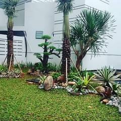 Front yard by Tukang Taman Surabaya - Alam Asri Landscape