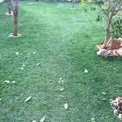 Vorgarten von Francisco jardinagem