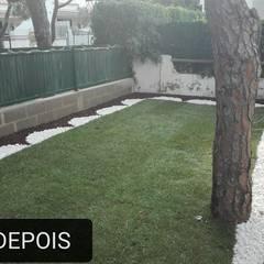 Construção de jardim relva e pedra: Jardins de pedras  por Francisco jardinagem