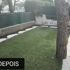 Francisco jardinagem:  tarz Kayalı bahçe