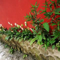 Jardineira: Jardins de fachadas de casas  por Oria Arquitetura & Construções