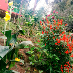Zen garden by Oria Arquitetura & Construções