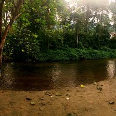 Residência em Paraty: Jardins de pedras  por Oria Arquitetura & Construções