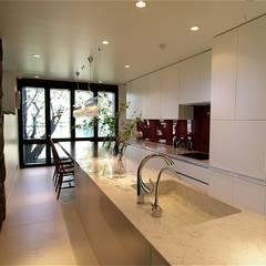 屋上庭園のある都会のオアシス・世田谷: Sデザイン設計一級建築士事務所が手掛けたキッチンです。,オリジナル 大理石