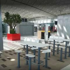 Jardinière STEELAB en tôlerie aluminium laqué: Restaurants de style  par ATELIER SO GREEN