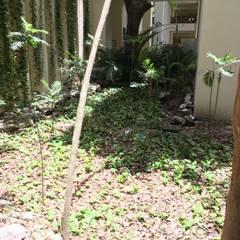 Jardines De Piedra Ideas Disenos Y Decoracion Homify - Jardin-con-piedras