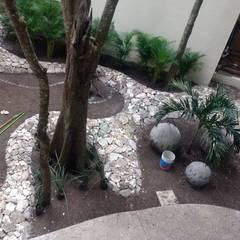 Rock Garden by David Araiza Pérez DAP Diseño,  Arquitectura  y Paisaje