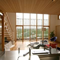 キッチンよりグリーンウォールをみる: 株式会社高野設計工房が手掛けたリビングです。
