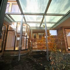 光庭(中庭): 株式会社高野設計工房が手掛けた庭です。