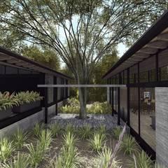 AVANDARO 278 : Casas de campo de estilo  por C_arquitectos