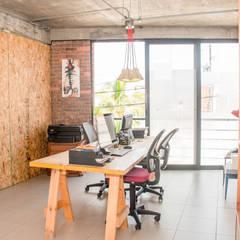 Área de trabajo colaborativo: Oficinas y tiendas de estilo  por Constructora e Inmobiliaria Catarsis